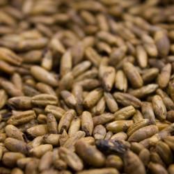 Grain mixtrure for 1 Liter...